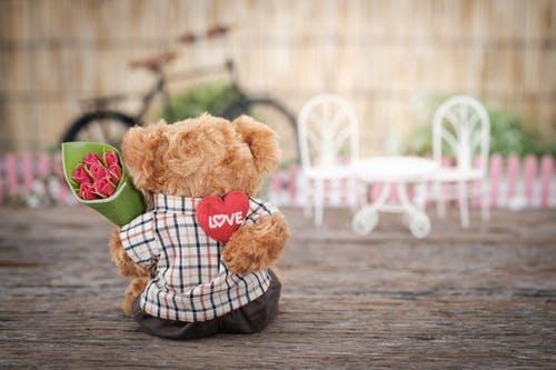 Chocolate & Teddy day